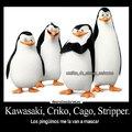Los pingüinos mascadores