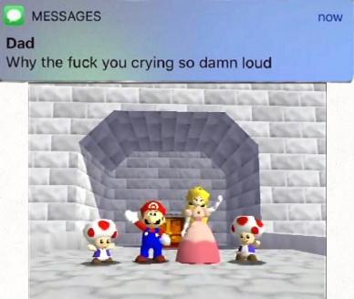Me hace llorar de felicidad. Todo un kpo el Mario :really: - meme