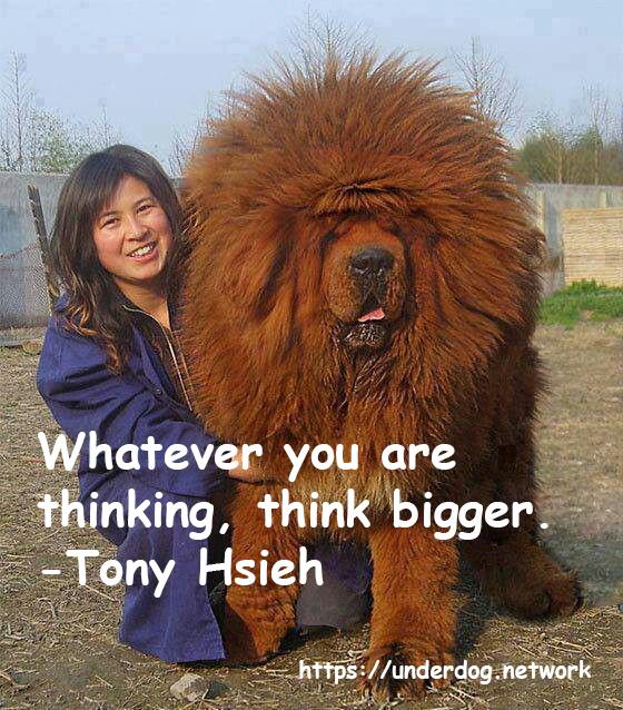 Think bigger dog - meme