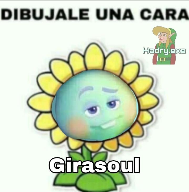 Girasoul - meme