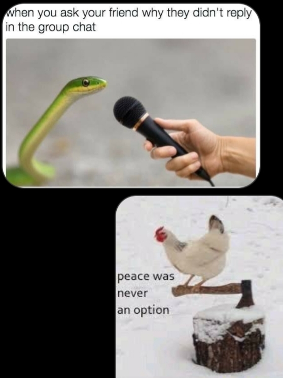 Peace was never an option - meme