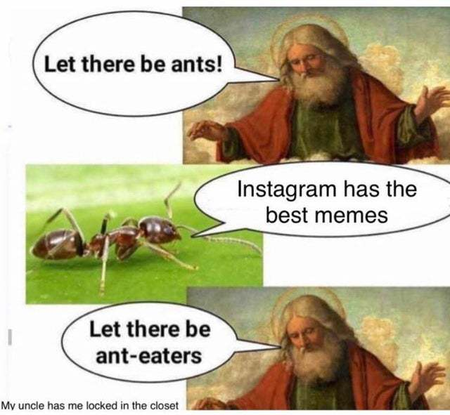 Let there be ants - meme
