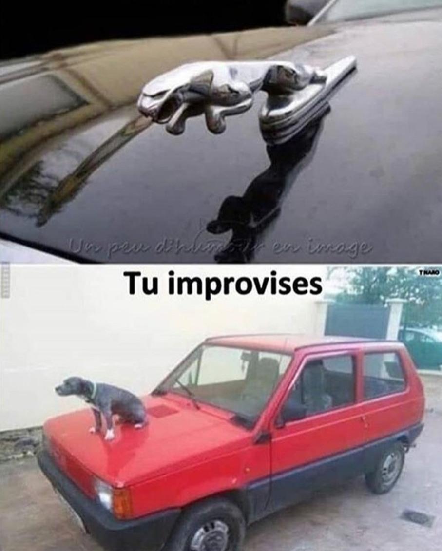 Improvisation - meme