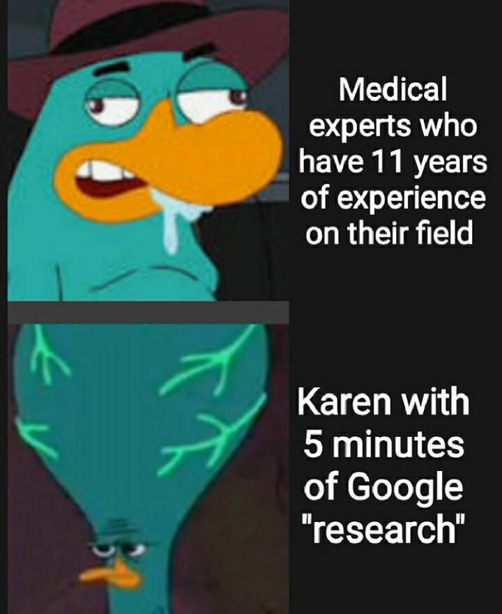 Karen's these days - meme