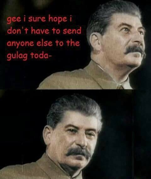 Title survived gulag - meme