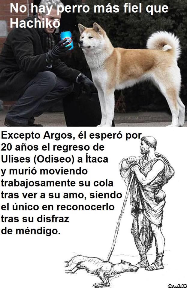 Argos - meme