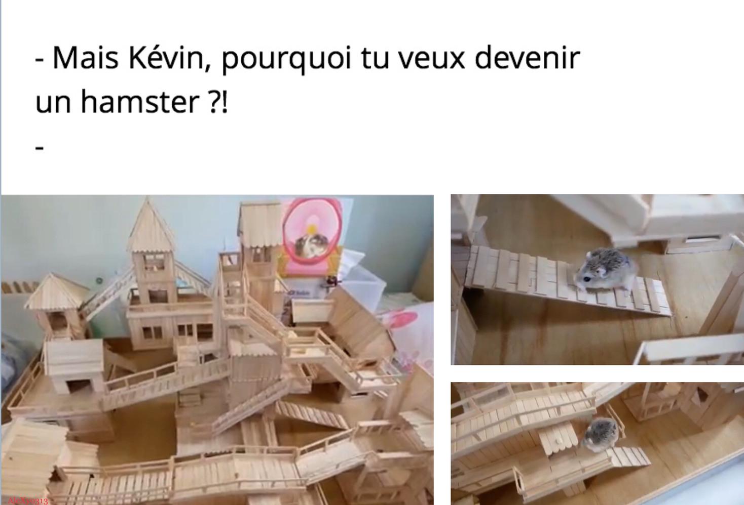 Kevin est un très beau prénom. (C'est totalement faux) - meme