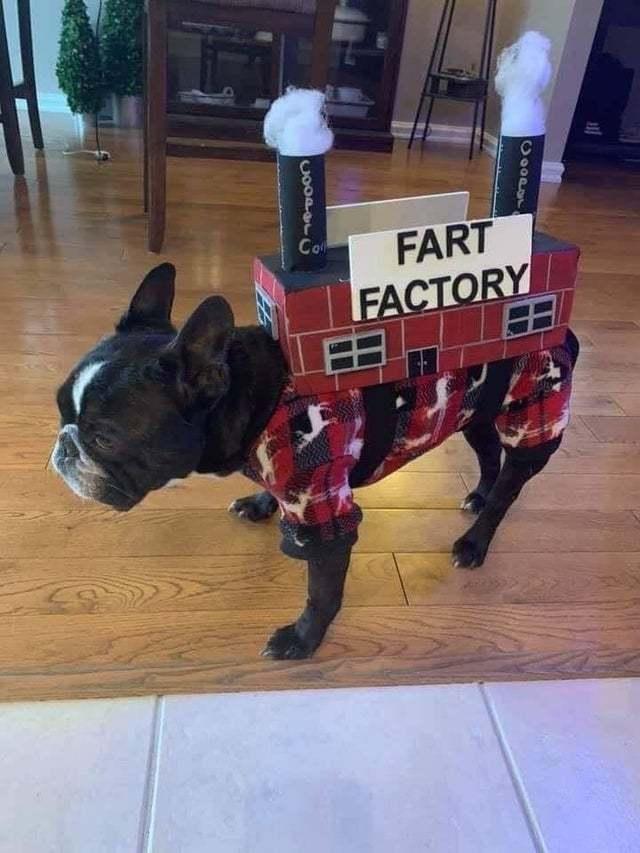 Fart factory - meme