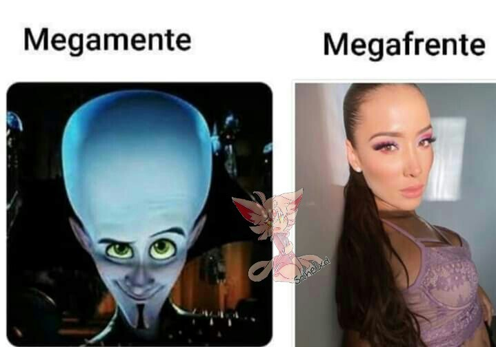 MEGA - meme