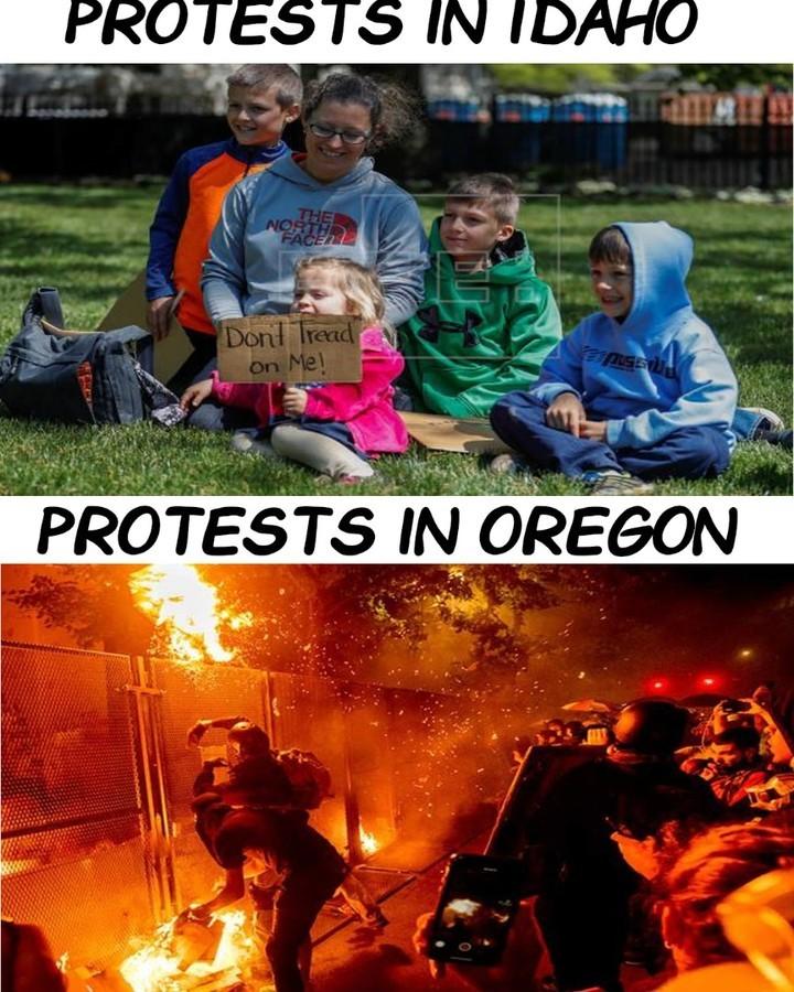 Protest - meme