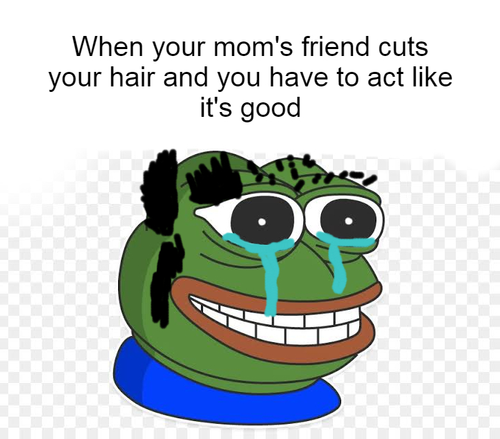 First haircut I've been able to get in months - meme
