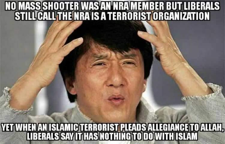 Liberal logic - meme