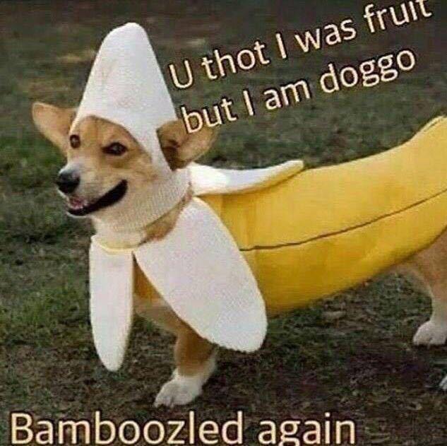 Banana Boi - meme