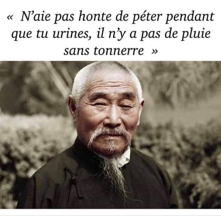 les fameux proverbes japonais... - meme