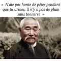 les fameux proverbes japonais...