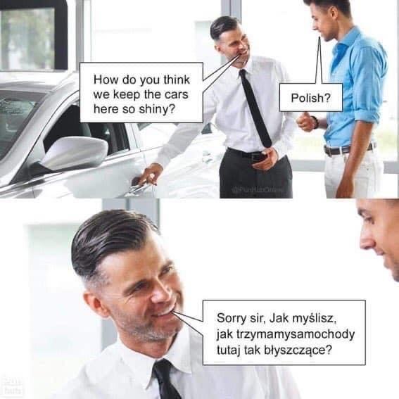 polish - meme