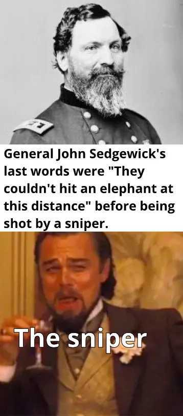 Well,  he wasnt an elephant so technically he was right - meme