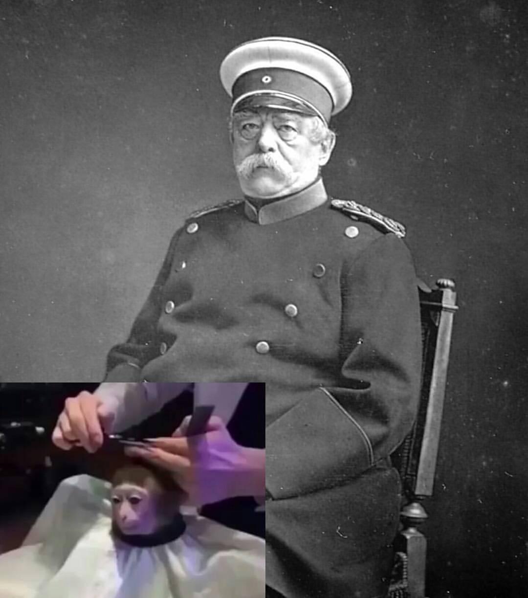 Kaiser - meme