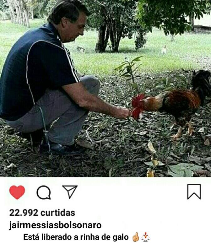 O PIB do Brasil acaba de subir 6000% - meme