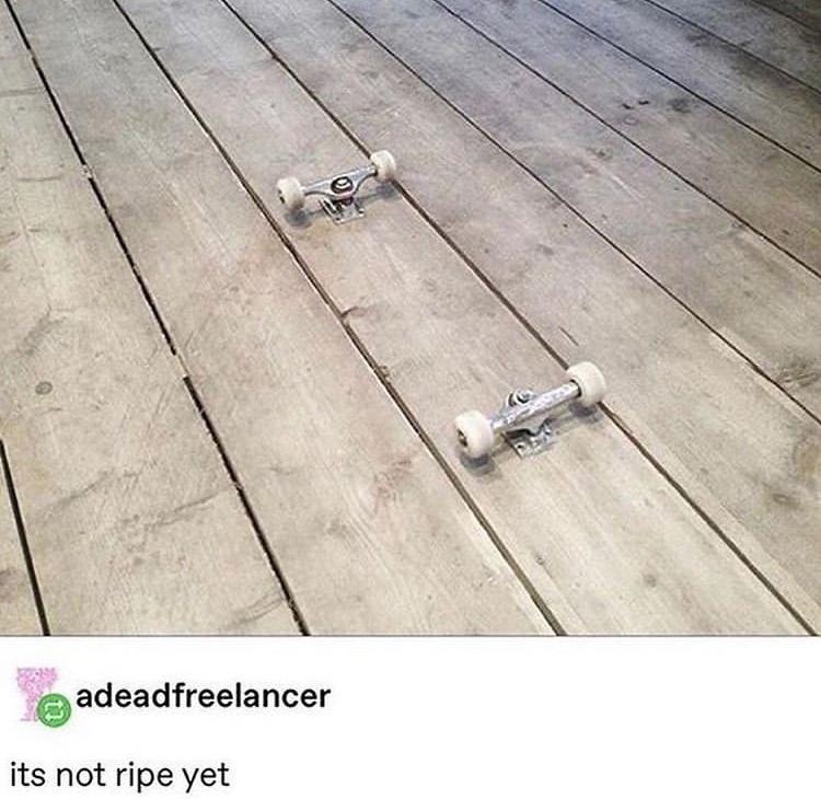 unripe skateboard - meme
