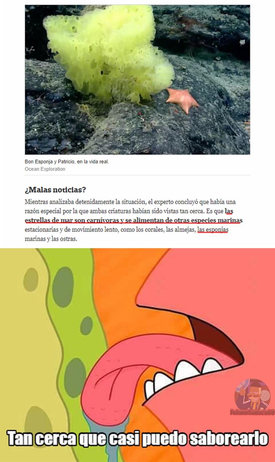 PATRICIO NOOOOO!!!! D= - meme