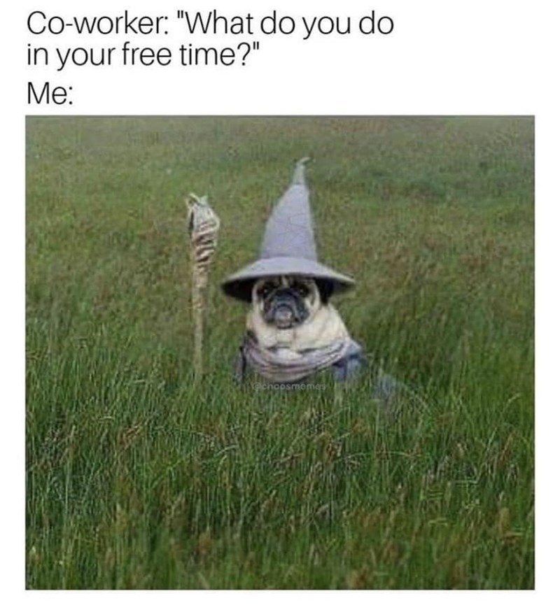 Tell me what type of wizard this is in the comment section, vote for which one you like the most - meme