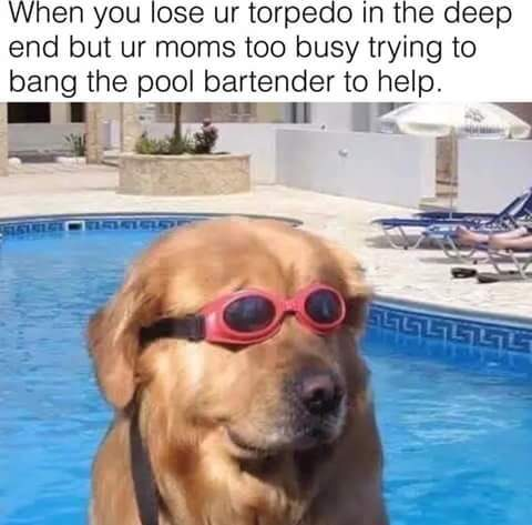 A torpedo is a swimming toy that you throw and then go and search for in the pool - meme
