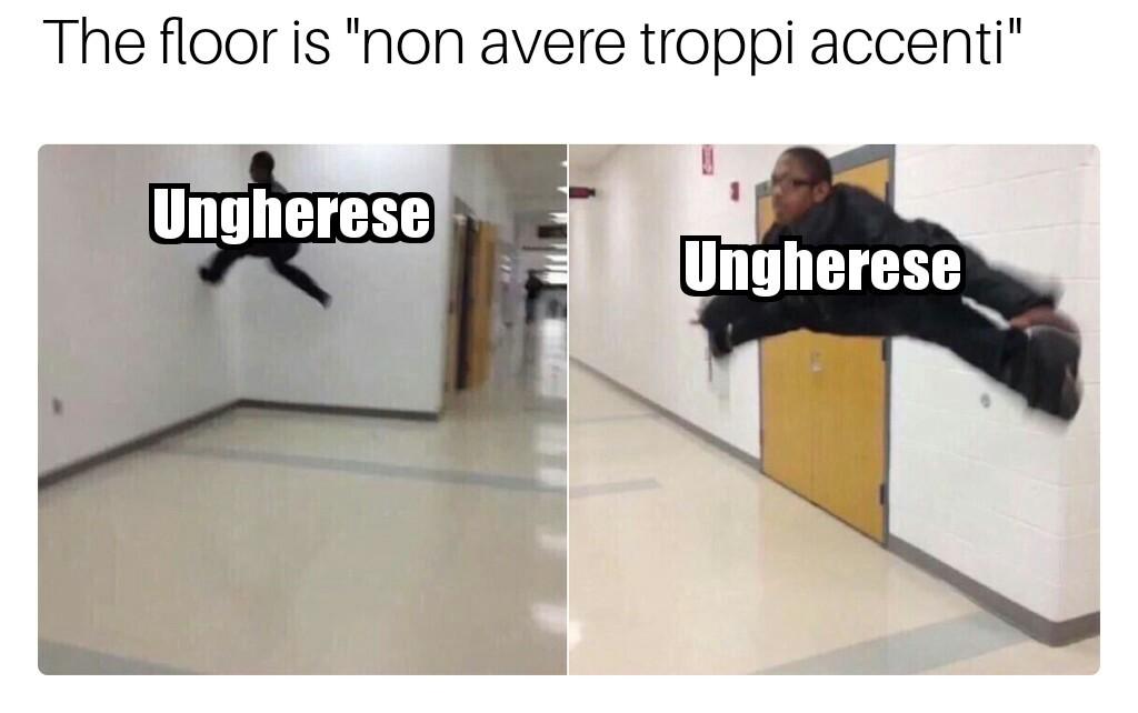 L'ungherese ne ha troppi - meme