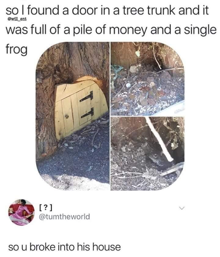 Nature laws - meme