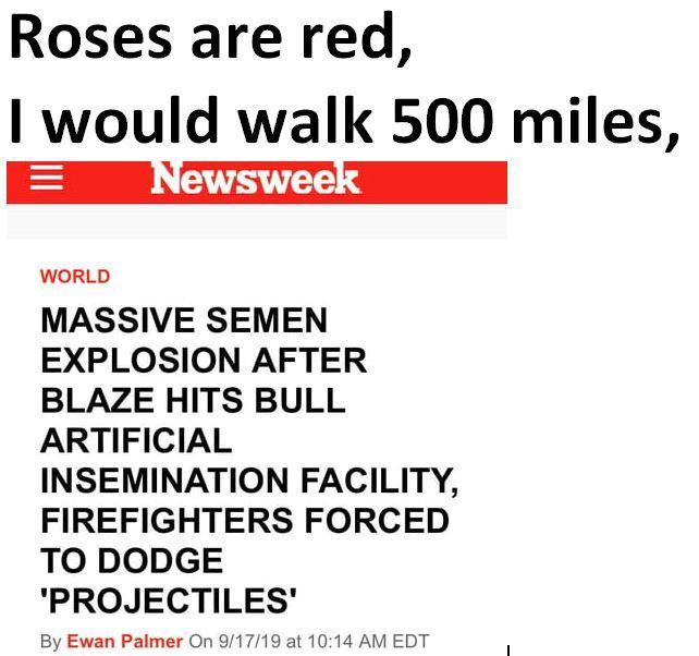 Roses - meme