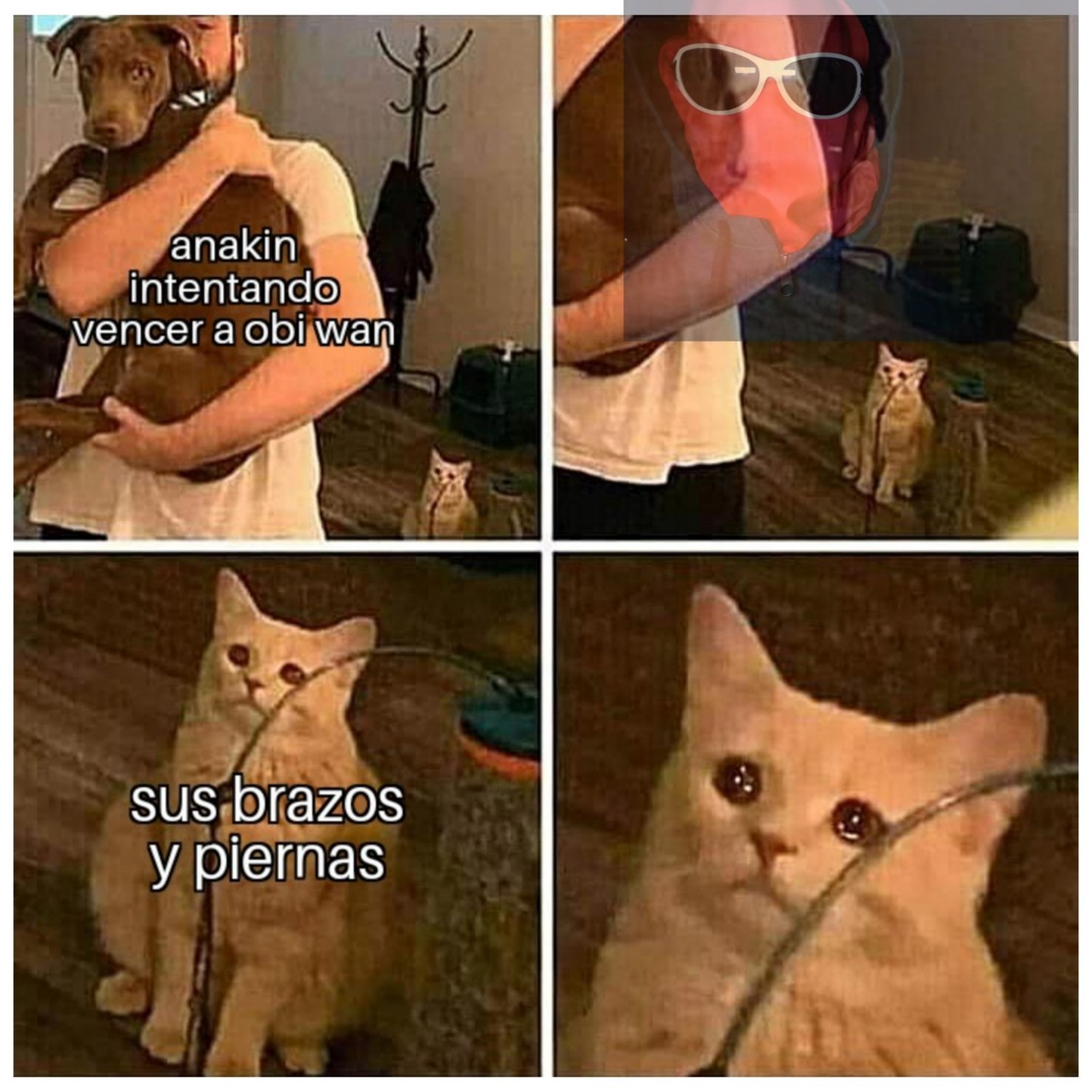 Anakin la cagaste - meme
