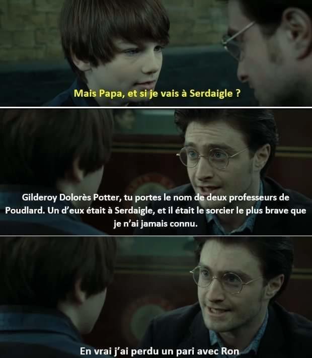 Harry pas de pot teur - meme