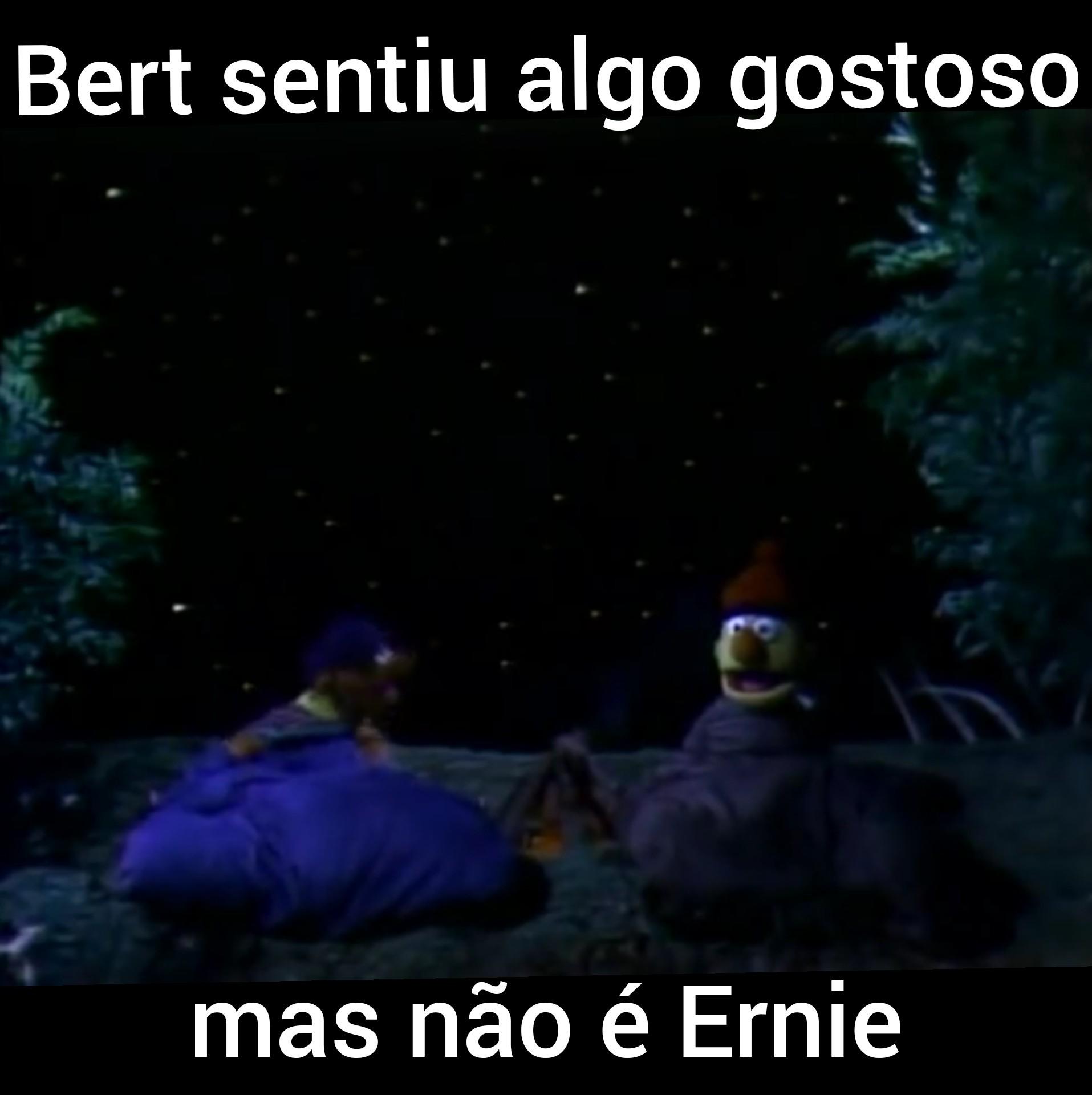 Não sei Ernie - meme