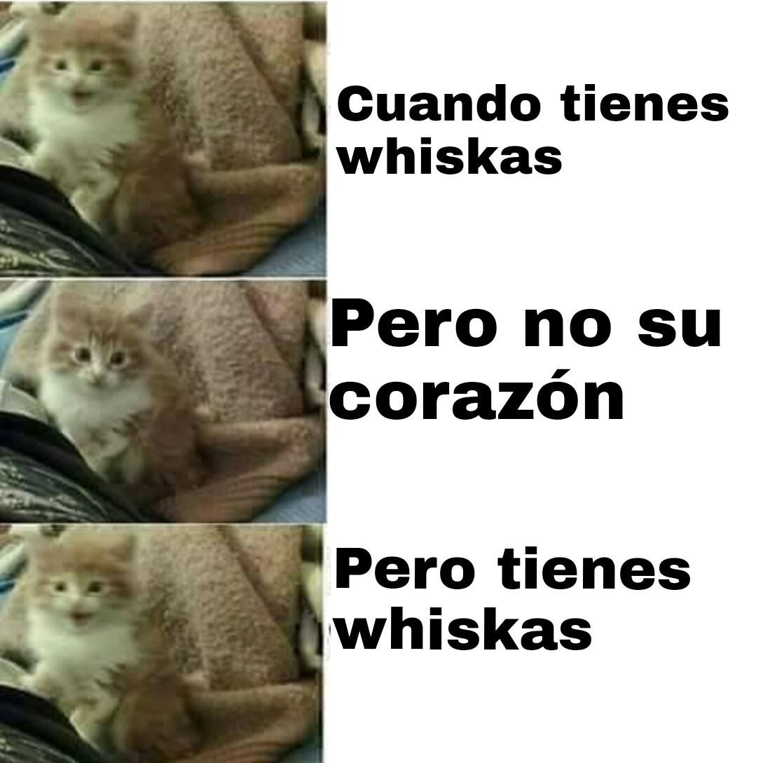 Original, Fiesta de positivos - meme