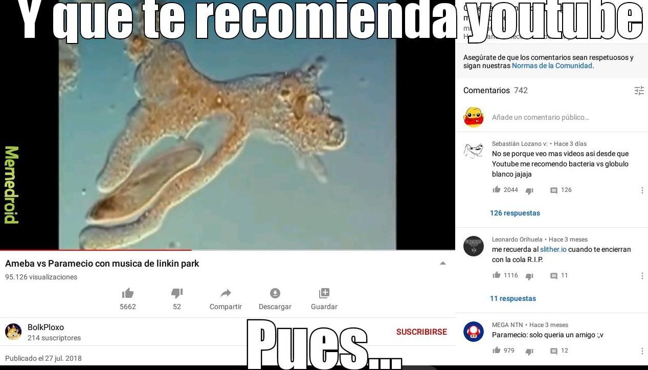 El titulo fue cientifico y fue a ver el video - meme
