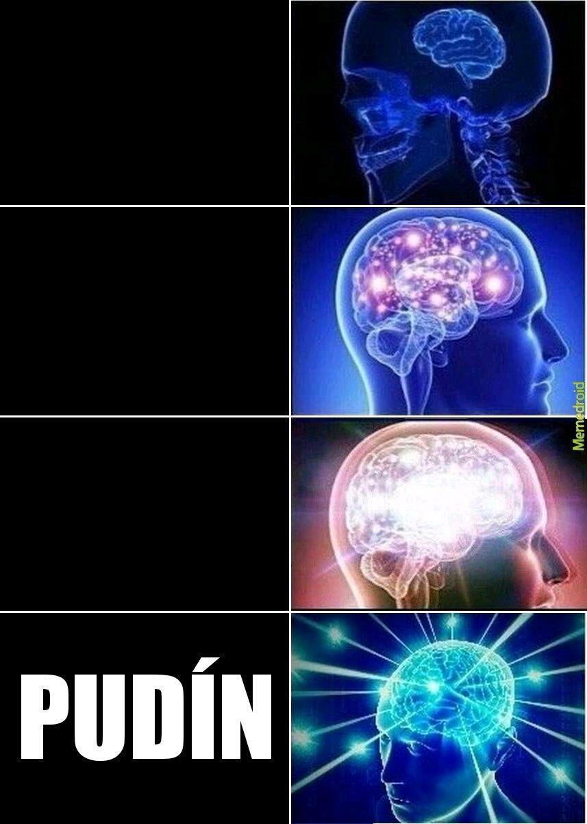PUDÍN - meme
