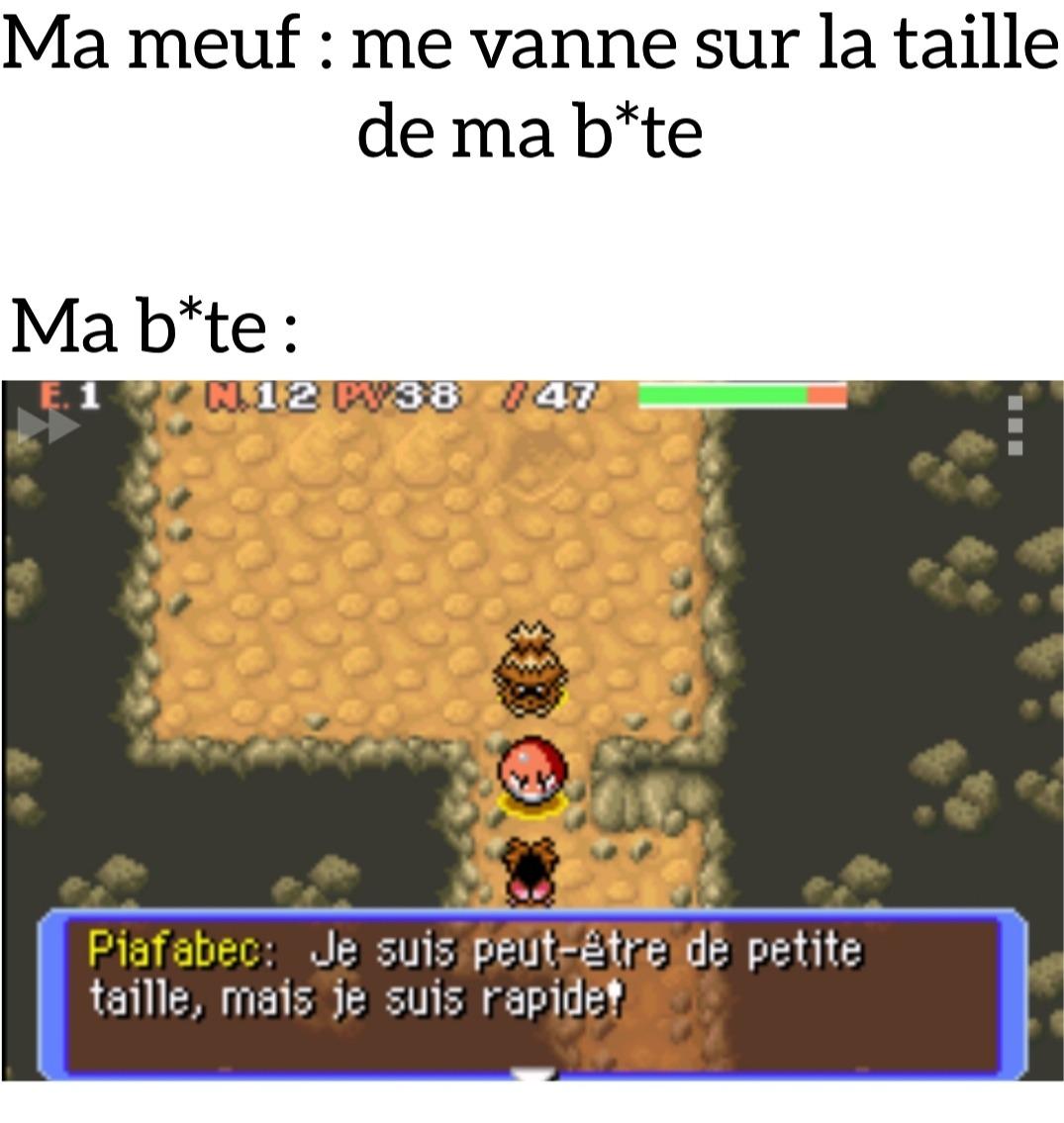 R.I.P ma b*te - meme