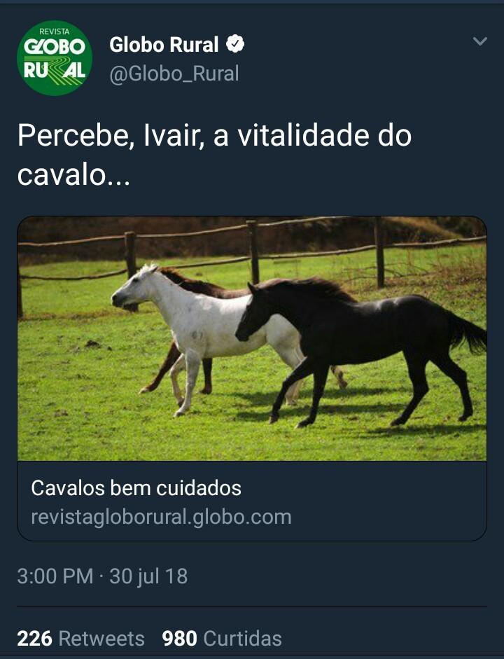 Pérolas da Reportarem Brasileira - meme