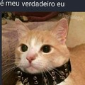 Gato emo