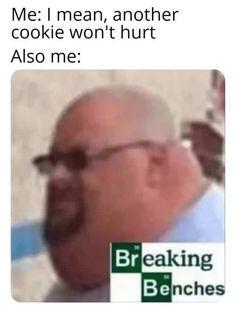 Breaking Benches - meme