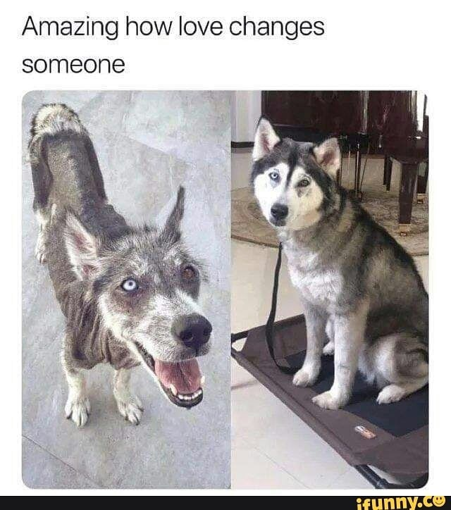 Love changes.         https://gagbee.com/love-changes-someone/ - meme