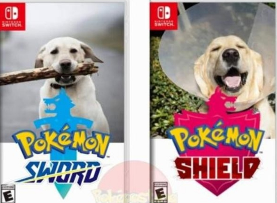 Pokéjoke 3 - meme