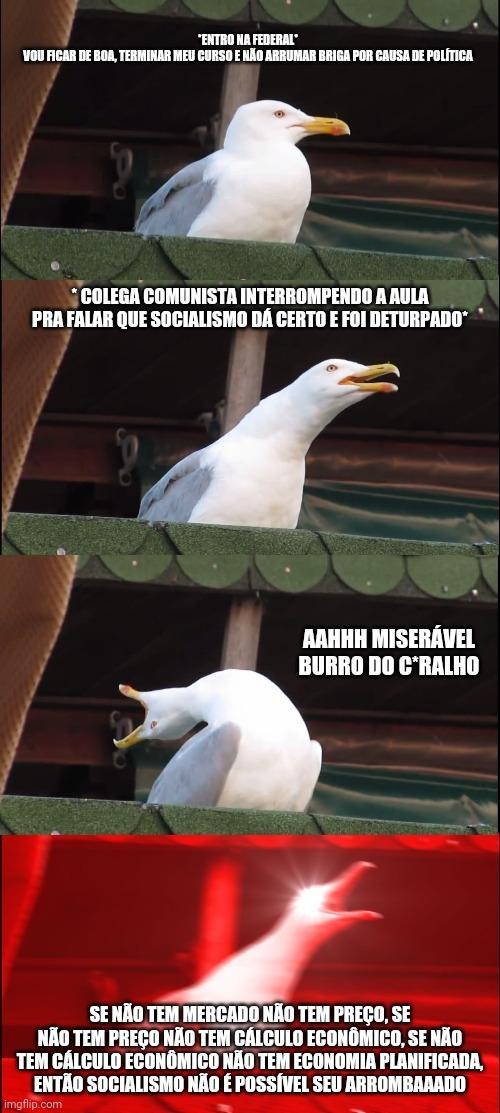 Socialismo é igual Marea - meme