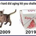I like a good challenge