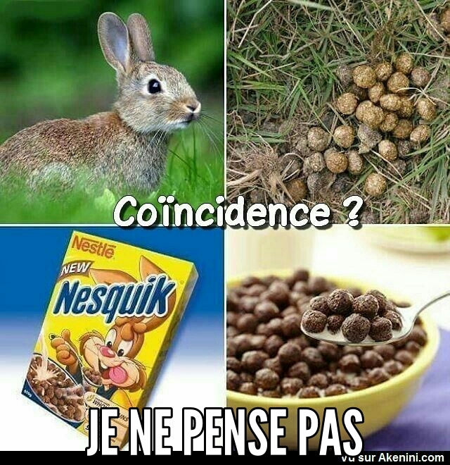 Chocapic vs lapin