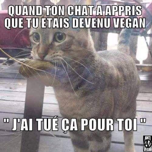 J'aime pas les vegan - meme