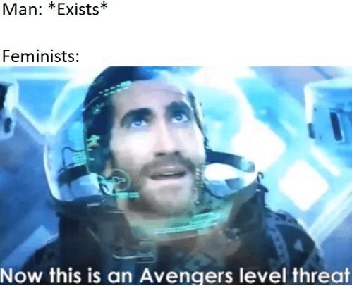 Feminists - meme