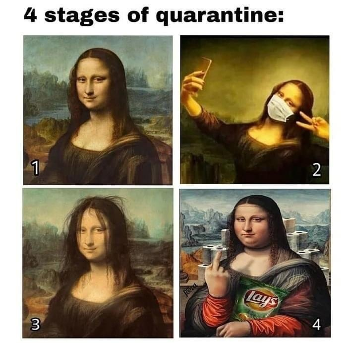 Mona stages - meme