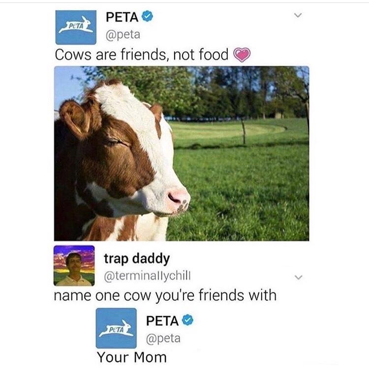 Your Mom - meme