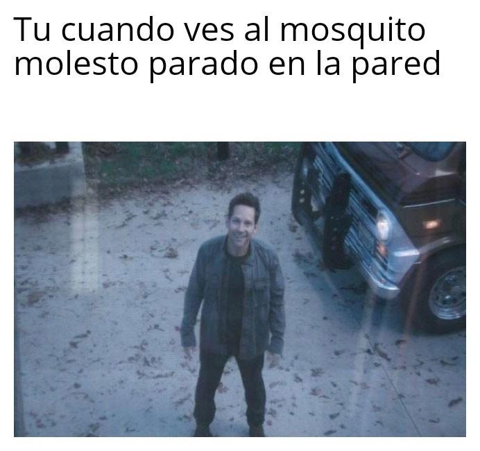 Alabado el mosquito - meme